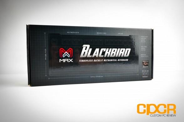 max-keyboard-blackbird-tenkeyless-mechanical-gaming-keyboard-custom-pc-review-1