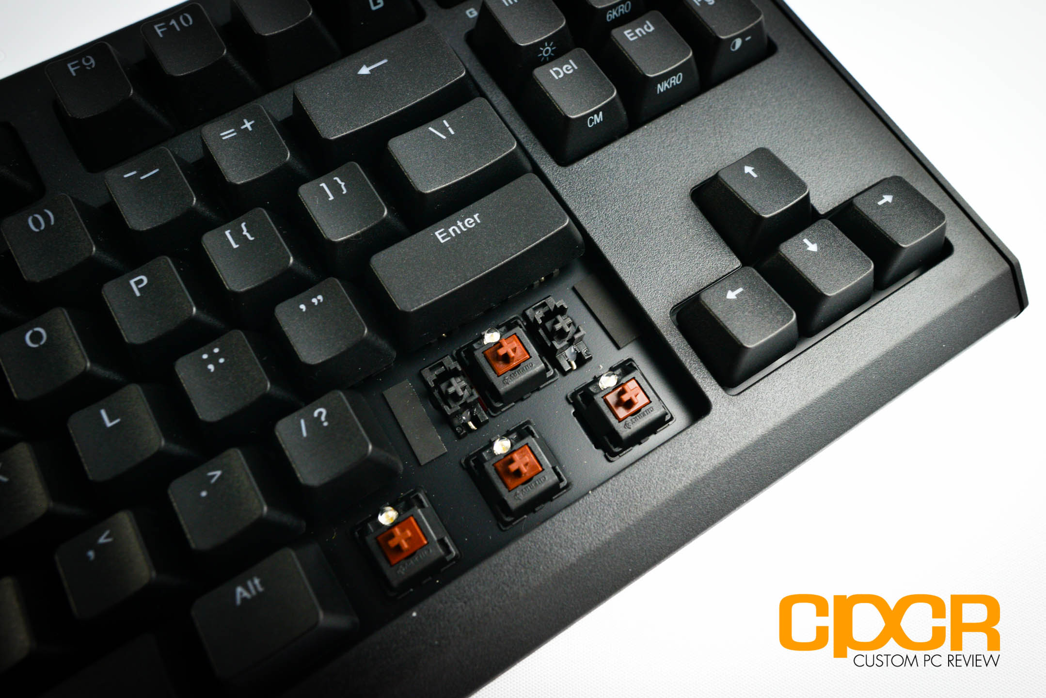 Review: Max Keyboard Blackbird Tenkeyless Mechanical Gaming Keyboard