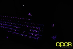 razer-chroma-deathadder-blackwidow-ultimate-kraken-custom-pc-review-40