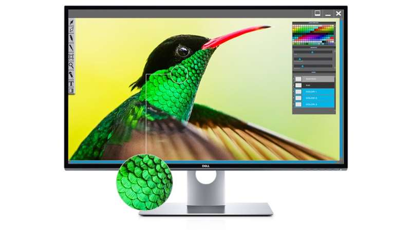 dell up3218 featured image